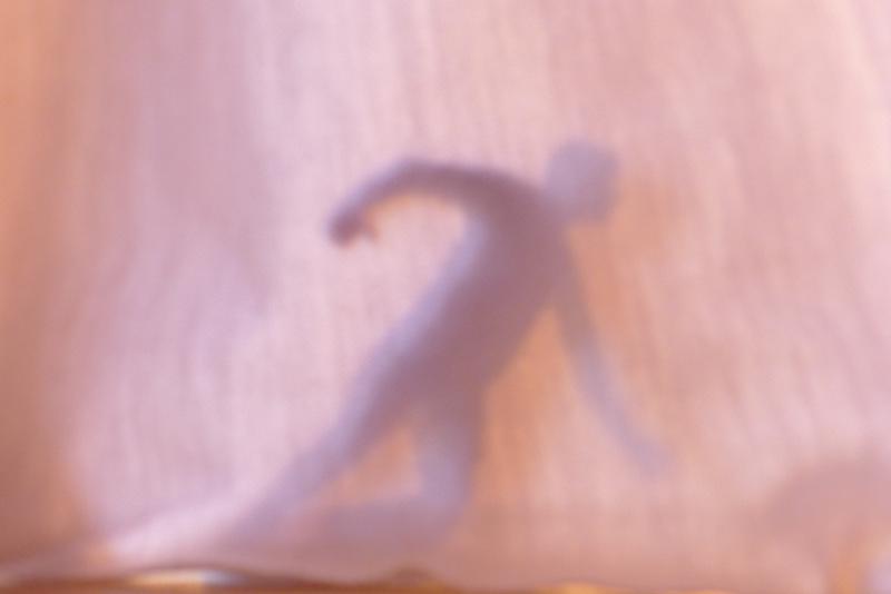 Cinq apparitions successives - Vincent Dupont ©JYPS