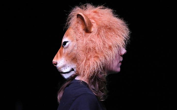 Diotimes et les lions spectacle compagnie contour progressif Mylène Benoit